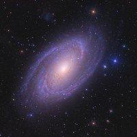 La Galassia a Spirale M81