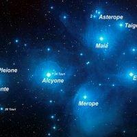 pleiadi stelle