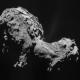 Che cosa sono le comete?