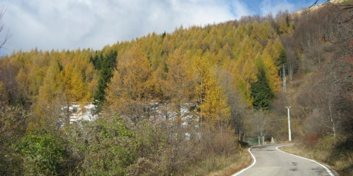 Piemonte - Capanne di Cosola, Cabella Ligure (AL)