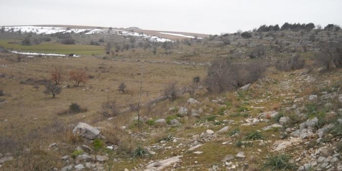 Puglia - Area 21, Ruvo di Puglia (BA)