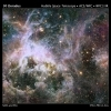 NGC 2070 - La Nebulosa Tarantola (Tarantula Nebula)